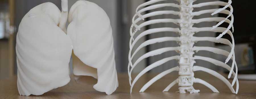 ساخت کبد انسان با چاپگر سه بعدی